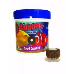 BCUK Calanus Reef Grazer 100g- Nourriture pour poissons