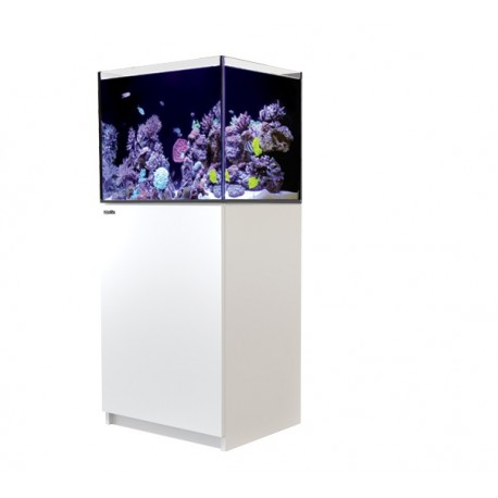 RED SEA REEFER 170- Blanc