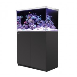RED SEA REEFER 250- Noir