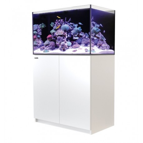 RED SEA REEFER 250- Blanc