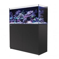 RED SEA REEFER 350- Noir