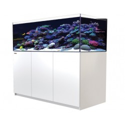 RED SEA REEFER XL 525- Blanc