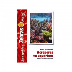 Acroporas en Aquarium- Guide de soins et reproduction