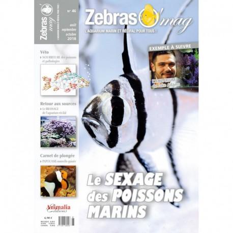 ZebrasO'mag n°46