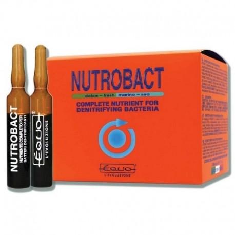 EQUO Nutrobact 6 Ampoules- Nutriment pour bactéries