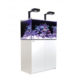 Red Sea REEFER Deluxe 250- Blanc