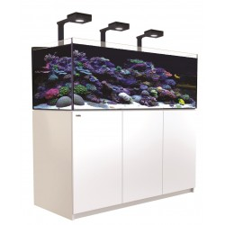 RED SEA REEFER Deluxe XL 525- Blanc