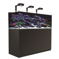 RED SEA REEFER Deluxe XL 525- Noir