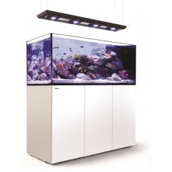 RED SEA REEFER Deluxe Peninsula 650- Blanc