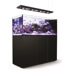 RED SEA REEFER Deluxe Peninsula 650- Noir
