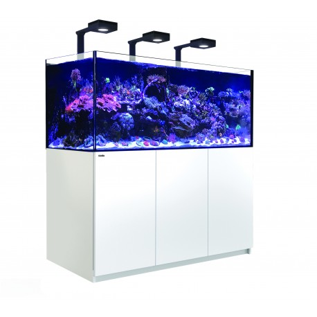 RED SEA REEFER Deluxe XXL 625- Blanc