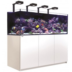 RED SEA REEFER Deluxe XXL 750- Blanc