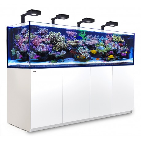 RED SEA REEFER Deluxe 3XL 900- Blanc