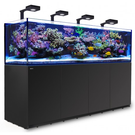 RED SEA REEFER Deluxe 3XL 900- Noir