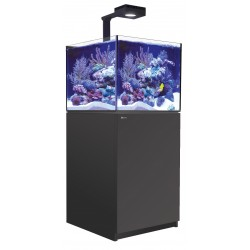 RED SEA REEFER Deluxe XL 200- Noir