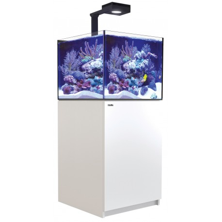 RED SEA REEFER Deluxe XL 200- Blanc