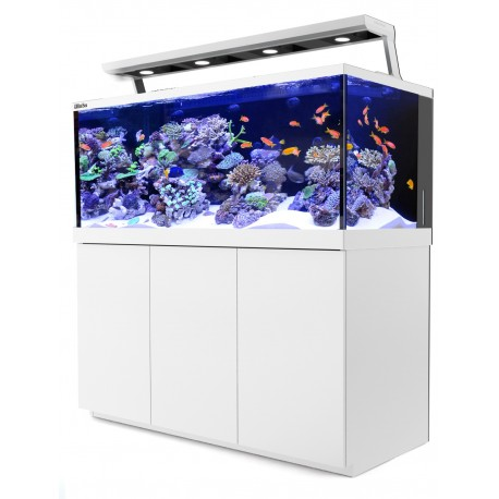 RED SEA MAX S650- Blanc