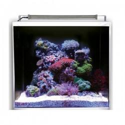 DUPLA MARIN Nano Ocean Cube Set 80- Nano aquarium marin