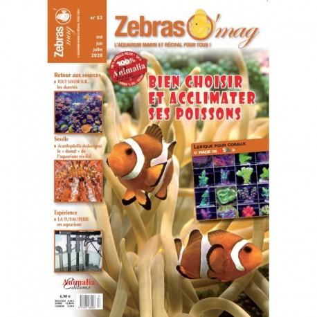 ZebrasO'mag n°53