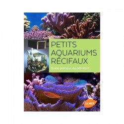 Poissons-clowns en Aquarium- Guide de soins et reproduction
