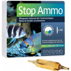 PRODIBIO Stop Ammo 12 Ampoules- Anti-ammoniaque