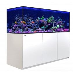 RED SEA REEFER-S 850- Blanc