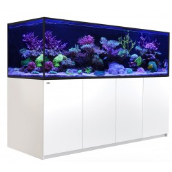 RED SEA REEFER-S 1000- Blanc