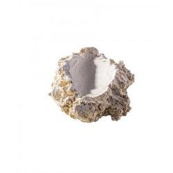 ARKA Céramique Shell Holder S- Suppot à bénitier