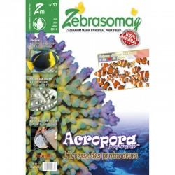 ZebrasO'mag n°57