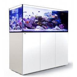RED SEA REEFER Peninsula 650- Blanc